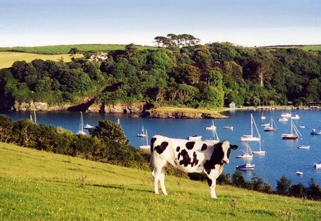 St Anthony Holidays Cornwall Guide