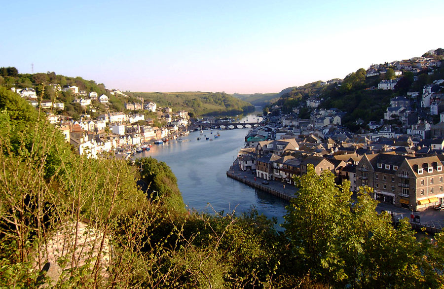 Looe River View