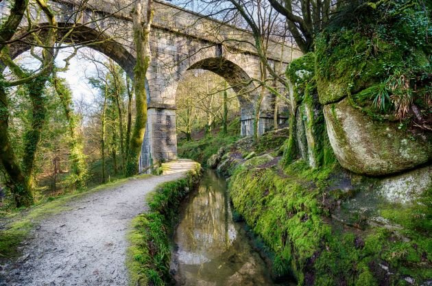 Treffry Viaduct - Luxulyan