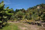Tremenheere arid gardens