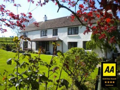 Tremaine Farm - Farmhouse Bed & Breakfast Accommodation