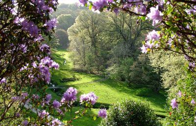 Boconnoc House gardens
