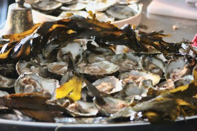 River Fal oysters