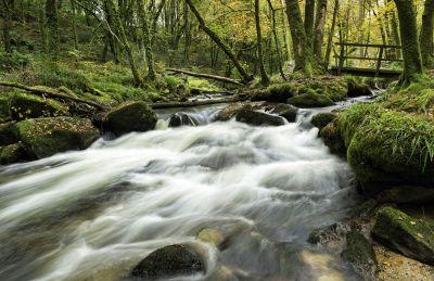 Golitha Falls - Bodmin Moor