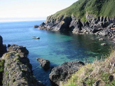 Cadgwith Rocky Cove