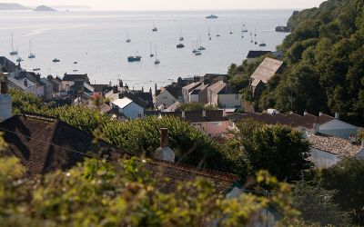 Cawsand rooftops