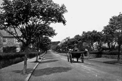 Alexandra Road, Penzance - 1902