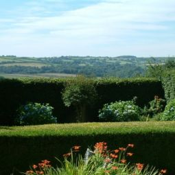 Calstock Bed And Breakfast