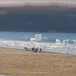 Harlyn beach surfcam