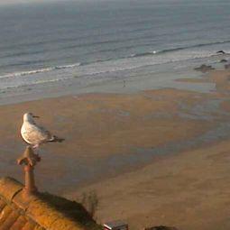 Tolcarne Beach Webcam
