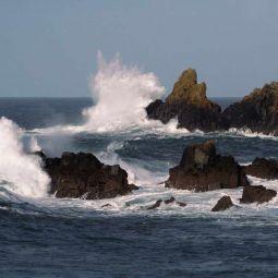 Wave Duet