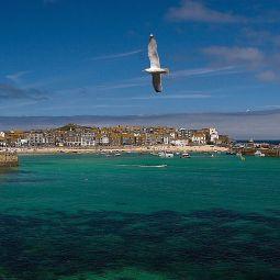 St Ives flight