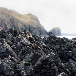 Gnarly rocks at Kynance Cove