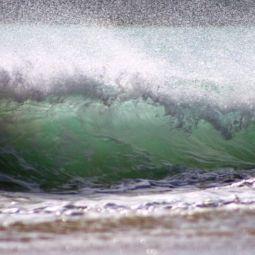 Surf #3