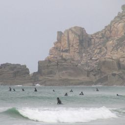 Too many surfers...