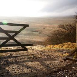 Broken Gate
