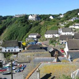 Cadgwith Cove Rooftops