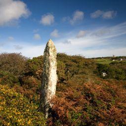 Carfury Standing Stone