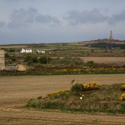 View to Carn Brea
