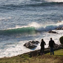Couple Admiring the Waves