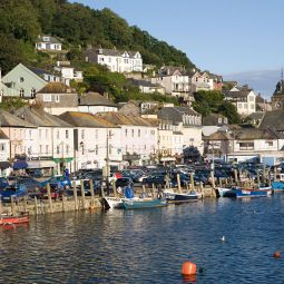 Looe dog friendly