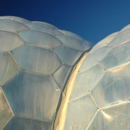 Eden Project Biome Detail