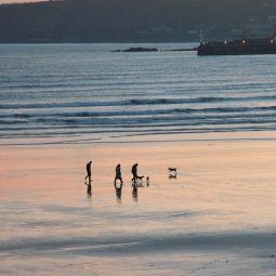 Dog Walkers on Eastern Green Beach