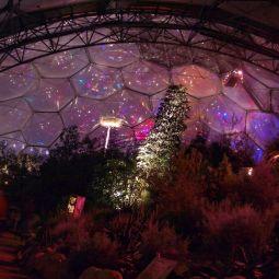 Festive Eden Biome