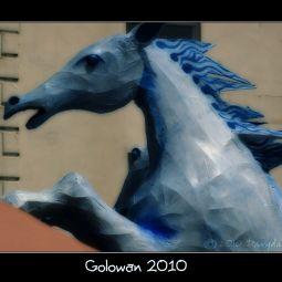 golowan2010