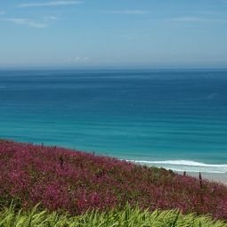 Gwenver Beach - Summer colours