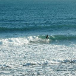 Gyllyngvase Surfer