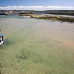 Hayle Harbour towards low tide