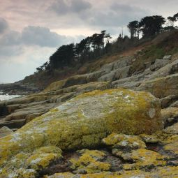 Lichen Covered Rocks - Kemyel Crease