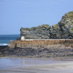 Locals Only - Portreath