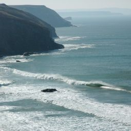Lushingtons - Porthtowan
