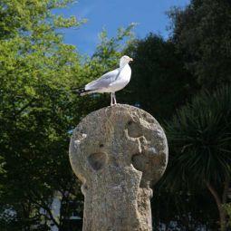 Penlee Cross