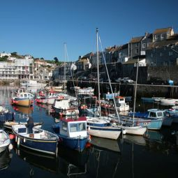 Mevagissey Fishing Fleet