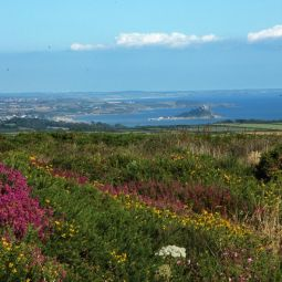 Mount's Bay from the moors