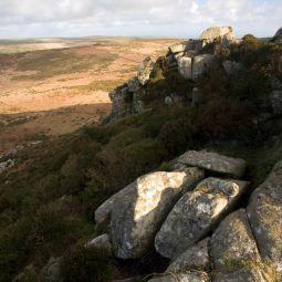Granite and Moorland