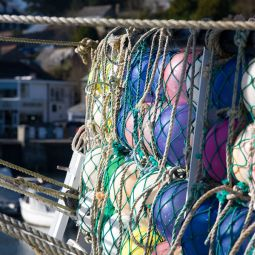 Padstow Buoys