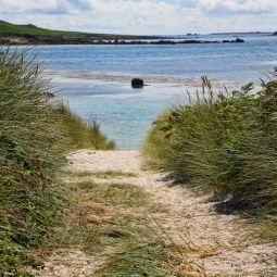 Path to Rushy Bay