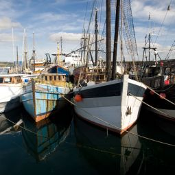Boats in Penzance Harbour