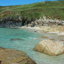 Cornish Cove