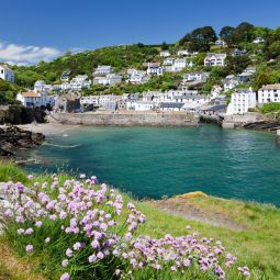 Polperro dog friendly