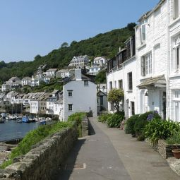 Polperro from the Warren