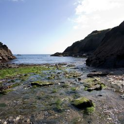 Portloe Harbour Rocks