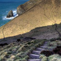 Coastpath between Portreath and Porthtowan