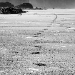 Footprints - Porthtowan beach