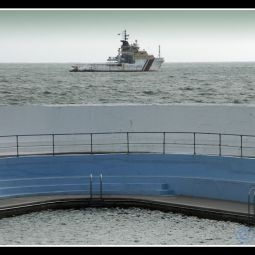 Newlyn boats