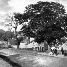 Alverton, Penzance - 1902